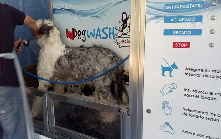 lavanderia-canina
