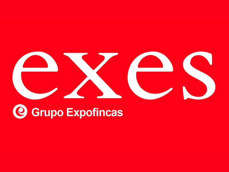 Logo de la Franquicia Exes - Grupo Expofincas