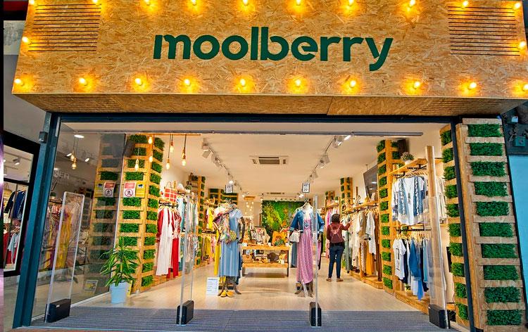 precio-franquicia-moolberry