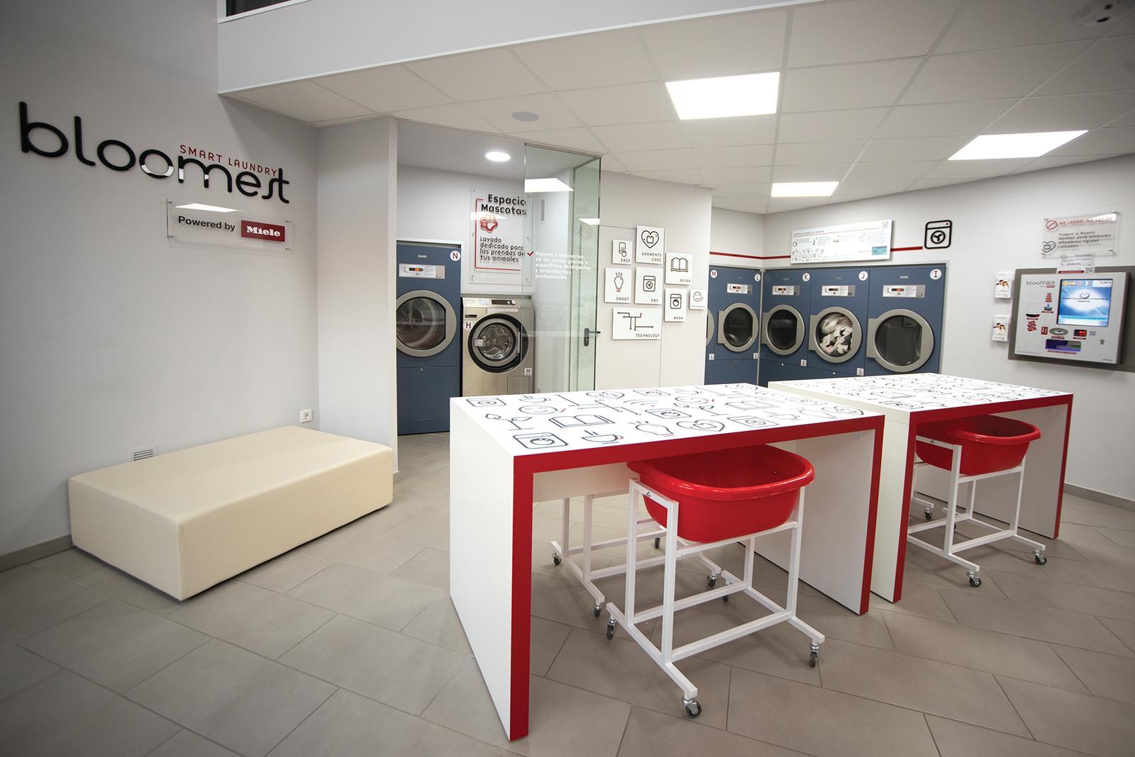 interior-lavanderia-autoservicio
