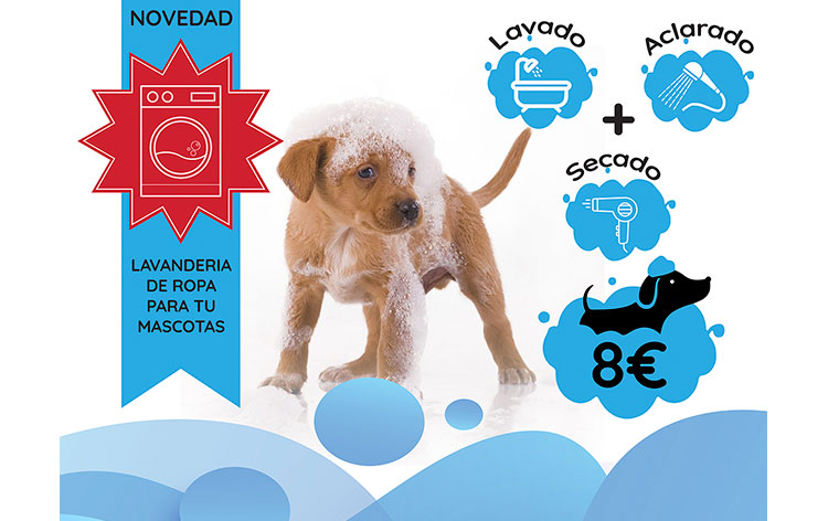 precio-franquicia-i-love-dog-wash