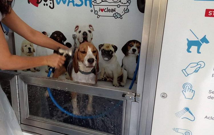 abrir-negocio-para-mascotas
