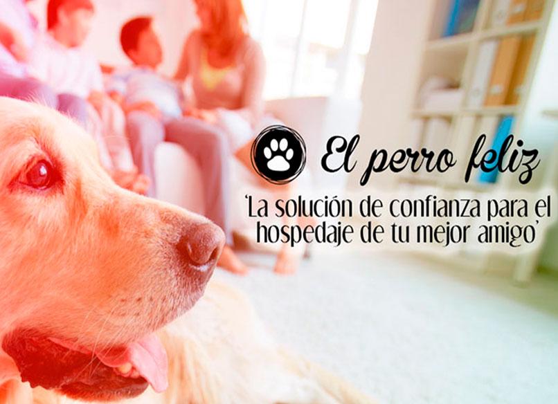 El Perro Feliz, primera franquicia española de cuidadores de mascotas profesionales: