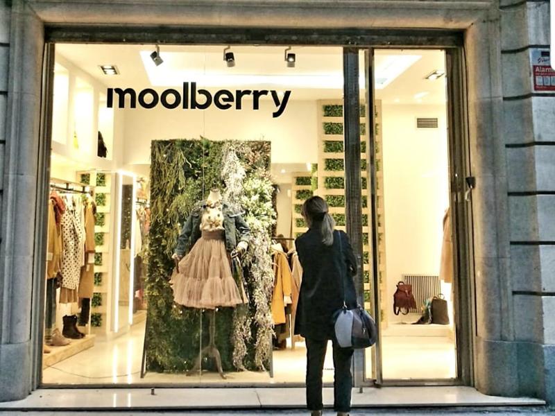 Tienda-mollberry-moda-sostenible