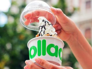 abrir-franquicia-de-yogur-helado