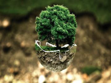Abre-una-franquicia-sostenible